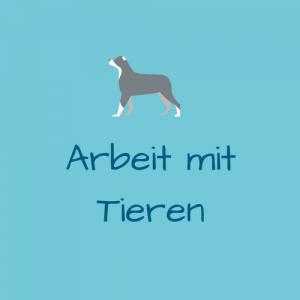 Kinesiologie für Mensch und Tier Barbara Gaugl Arbeit mit Tieren